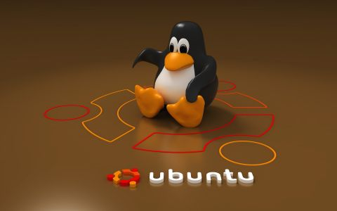 20 Useful Ubuntu Shell Commands with examples