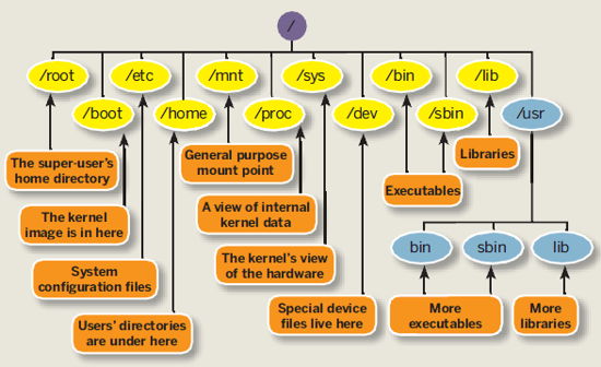 filesystem hierarchy standard español