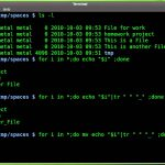 Linux - Important Facts About Filenames